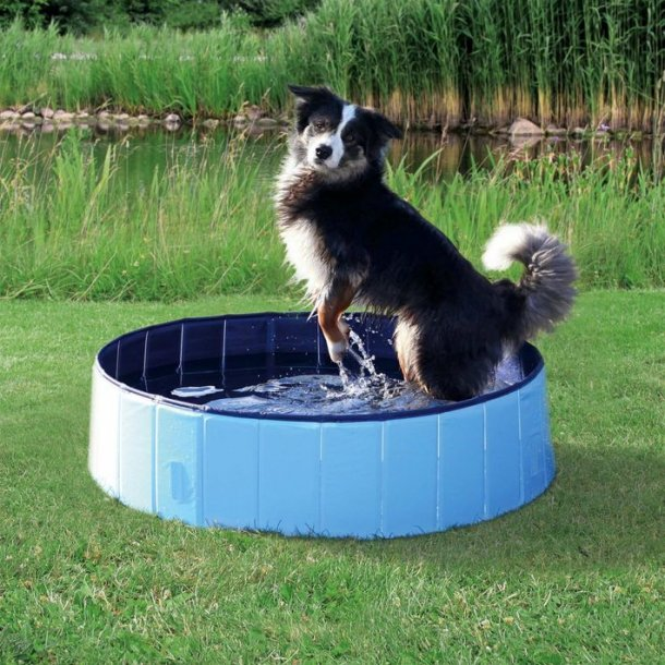 Hundepool Ø120x30cm