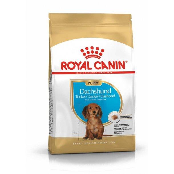 Royal Canin Gravhund puppy 1,5kg