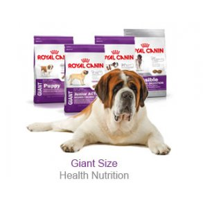 Royal Canin Giant (over 45kg)