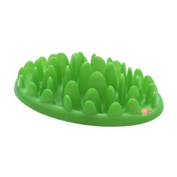 Green hundeaktivitet grøn